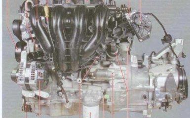 Двигатели Ford Focus 2