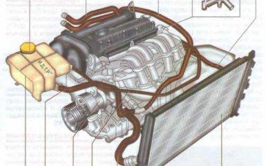Система охлаждения Ford Focus 2